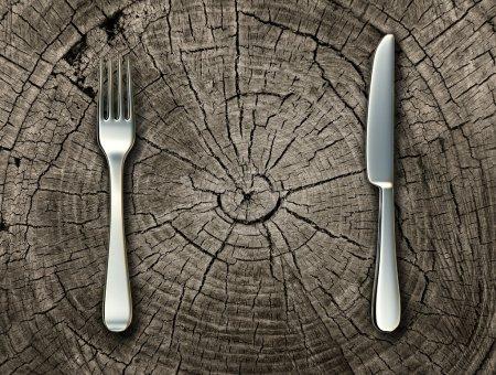 Photo pour Concept d'aliments naturels et alimentation biologique idée de mode de vie sain avec une fourchette en argent et un couteau sur un tronc d'arbre coupé représentant la nourriture crue et rustique cuisine de campagne et cuisine traditionnelle . - image libre de droit
