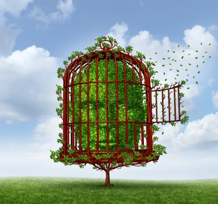 Photo for Freedom of the mind concept as a tree in the shape of a human head trapped by branches shaped as an open birdcage or bird cage for personal growth and escaping obstacles of life for change as a metaphor for thinking outside the box. - Royalty Free Image