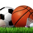 Recreation leisure sports equipment on grass with ...