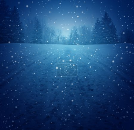 Photo for Winter landscape concept as a snowing blue background with a pedestrian road in perspective with foot prints leading to a forest of trees as a festive seasonal symbol of a tranquil and traditional holiday scene. - Royalty Free Image