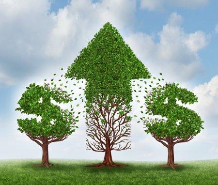Photo pour Concept de croissance monétaire et d'investissement dans de nouvelles opportunités d'affaires avec un potentiel futur de croissance comme deux arbres en forme de signes de dollar transférant leurs feuilles à une autre usine qui représente une flèche vers le haut de la richesse et le succès . - image libre de droit