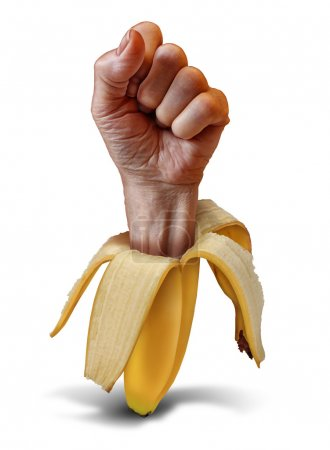 Photo for Nutrition power food concept with a hand fist emerging from a banana peel as a metaphor for eating healthy and living a fit lifestyle by consuming fresh fruits and vegetables. - Royalty Free Image