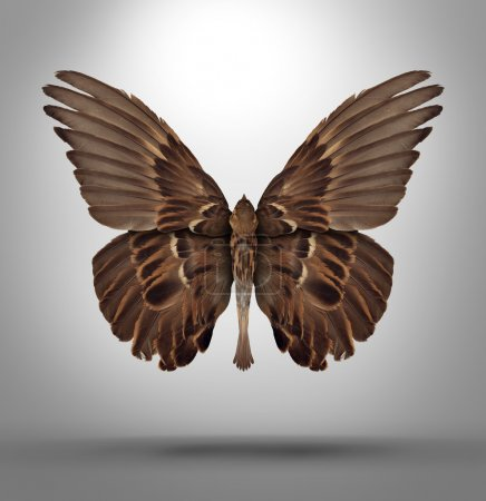 Change and adaptation concept with a an open wing ...