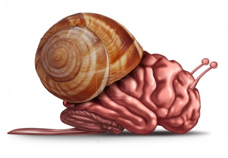 Photo for Thinking slow and brain function problems concept as a human organ in a snail shell as a mental health symbol for struggling with memory and  dementia as alzheimer or neurology challenges. - Royalty Free Image