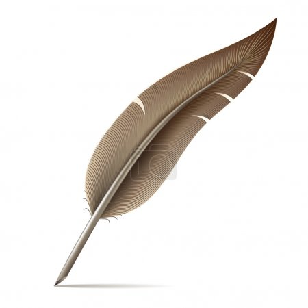 Image of feather pen on white background