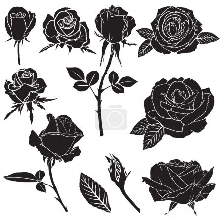 Illustration for Set of silhouette image rose flowers and leaves - Royalty Free Image
