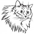 Contour black and white image muzzle tabby cat wit...