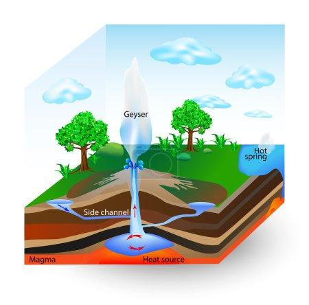 How Geysers Work. Vector diagram