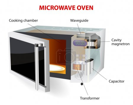 Microwave oven vector diagram