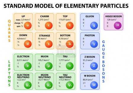 Illustration pour Schéma du modèle standard de physique des particules. 12 particules fondamentales qui composent la matière et 4 vecteurs de force fondamentaux. Vecteur . - image libre de droit
