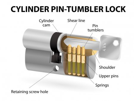 The cross sectional view of the pin cylinder lock