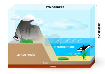 Illustration for Earth consists of Lithosphere (Land), Hydrosphere (Water), Atmosphere (Air) and biosphere (all life on Earth). - Royalty Free Image
