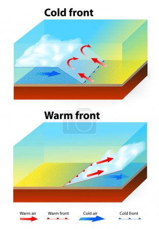 Illustration for Weather Fronts. Warm front and cold front. When a warm front passes through, the air becomes noticeably warmer and more humid than it was before. The air behind a cold front is colder and drier than the air in front. - Royalty Free Image