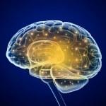 Brain impulses. Thinking prosess...