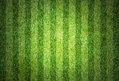 Green football field