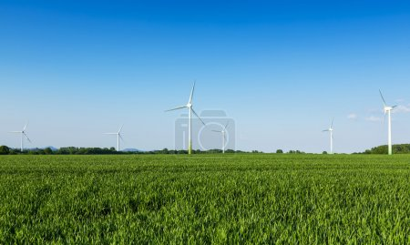 Windmills field farming windmill wind-turbine wind farm electricity energy economy eco bio