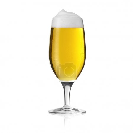 Pils beer glass mushroom dew drop beer froth foam crown gold alcohol brewery Gastro isolated