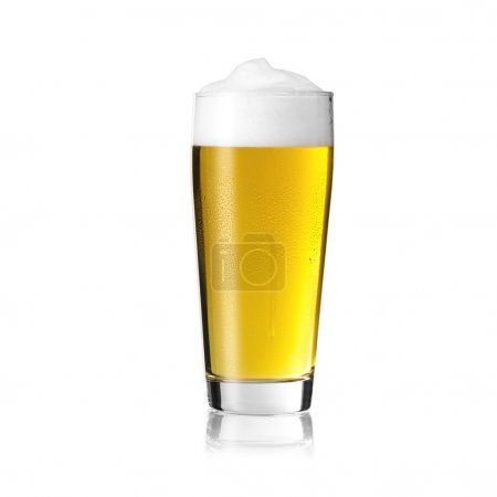 Beer glass cup drip willi tau beer froth foam crown gold pils alcohol brewery Gastro isolated