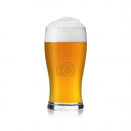 Beer glass beer froth foam crown dew drop gold alcohol brewery pils isolated Gastronomy