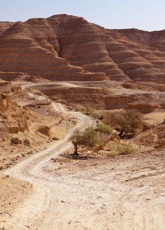 Road Through Negev Desert Hills