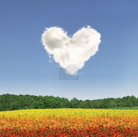 Heart cloud over colorful flowers
