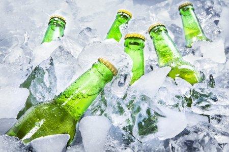 Foto de Primer plano de las botellas de cerveza verde está fresco en cubitos de hielo. - Imagen libre de derechos