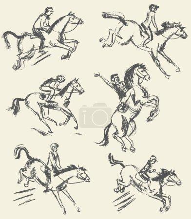 Equestrian sport - show jumping. Jockey riding a horse
