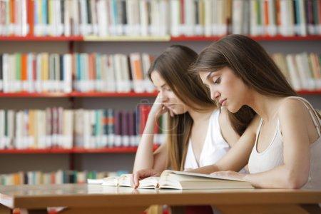 Photo pour Capture franche d'une paire d'étudiants universitaires dans la bibliothèque du collège - image libre de droit