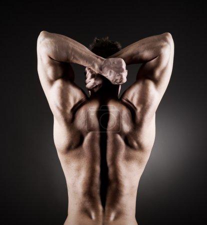 Muscular back