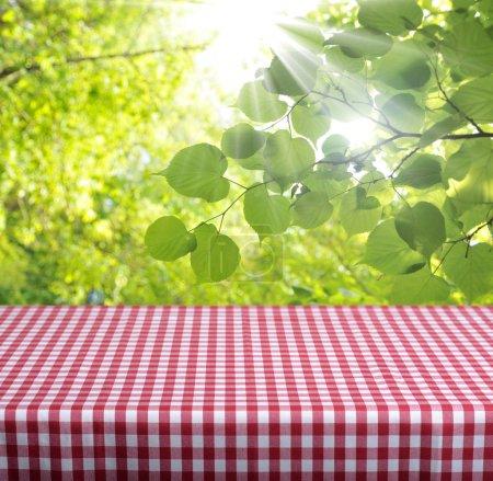 Photo pour Table vide et fond défocalisé feuillage vert. idéal pour les montages d'affichage produit. - image libre de droit