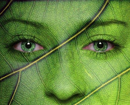 Photo pour Visage de femme avec des yeux de texture et vert feuille. notion d'écologie. - image libre de droit