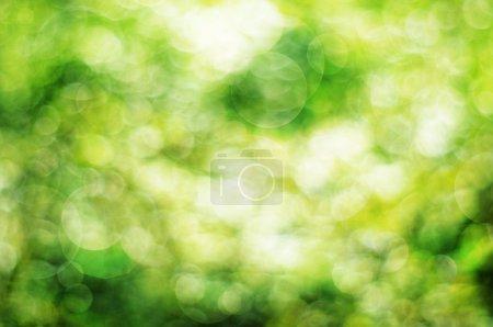 Photo pour Fond abstrait vert avec cercles bokeh - image libre de droit