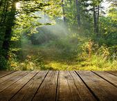 Empty wooden deck table with forest background