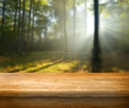 Photo for Empty table and defocused forest in background - Royalty Free Image