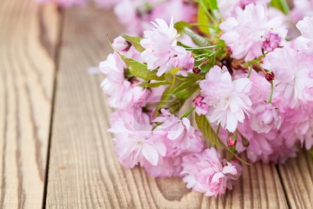 Photo for Sakura - Japanese pink cherry blossoms on wooden background - Royalty Free Image
