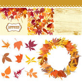 Autumn leaves set leaves clip art fall backgrounds wodden pattern and a beautful wreath