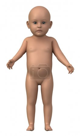Naked baby in anatomical position isolated - whole family also available