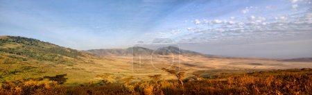 Panorama of African Savannah in Serengeti
