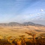 Panorama of African Savannah in Serengeti National...