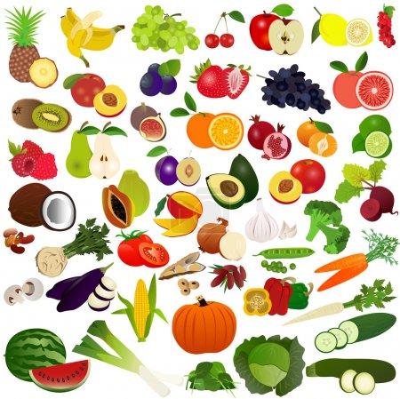 Illustration pour Illustration d'un ensemble de légumes et de fruits avec fond blanc . - image libre de droit