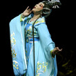 Chinese Gaojia Opera performer make a show on stag...