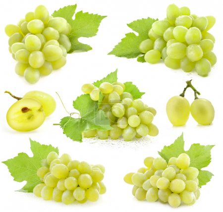 Collection of Grapes with leaves