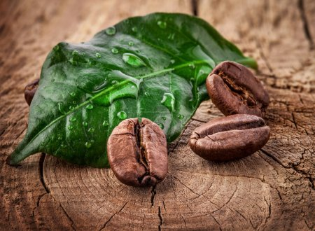 Photo for Coffee grains and green leaf on grunge wooden background - Royalty Free Image