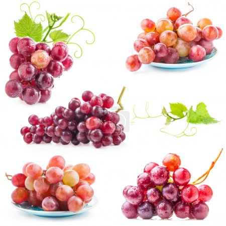 Photo for Collections of Red grape with water drops, closeup, isolated on white background - Royalty Free Image