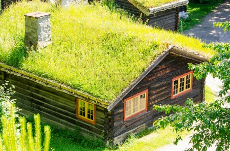 Grass roof country house