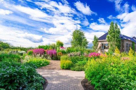 Photo pour Parterre de fleurs au jardin botanique à oslo en Norvège à été - image libre de droit