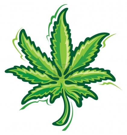 Illustration for Marijuana Leaf - Royalty Free Image