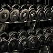 Row of Hand Barbells weight training equipment...