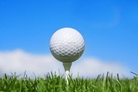 Golf ball on a tee horizontal