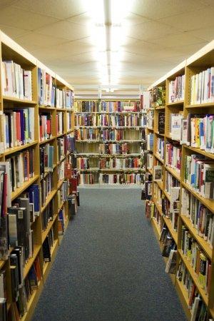 Bookshelves Full of Books inside of a Library